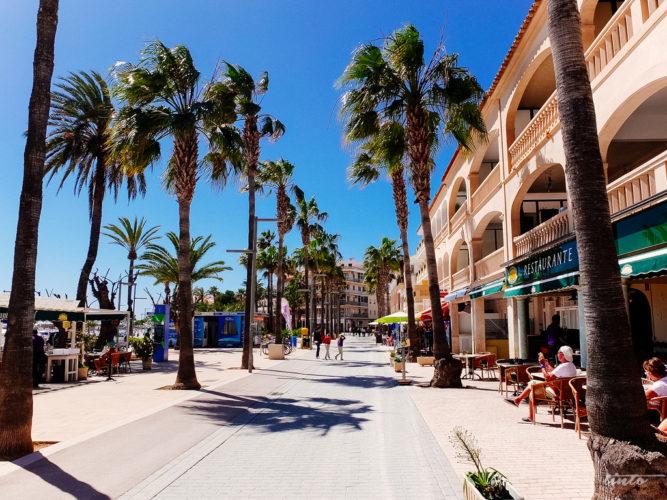 Weather Majorca in April 2020: Temperature & Climate