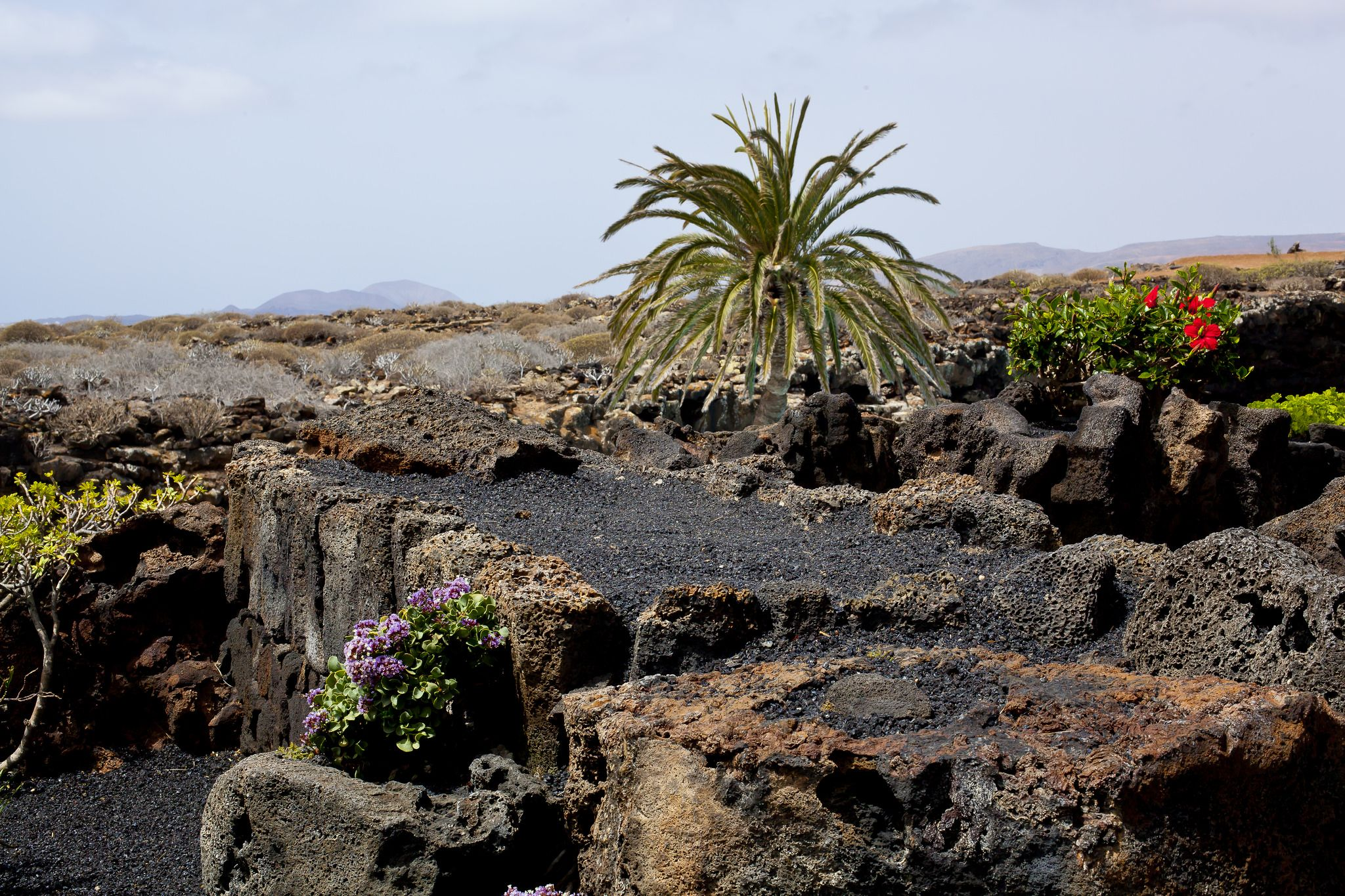 Weather-June-Lanzarote