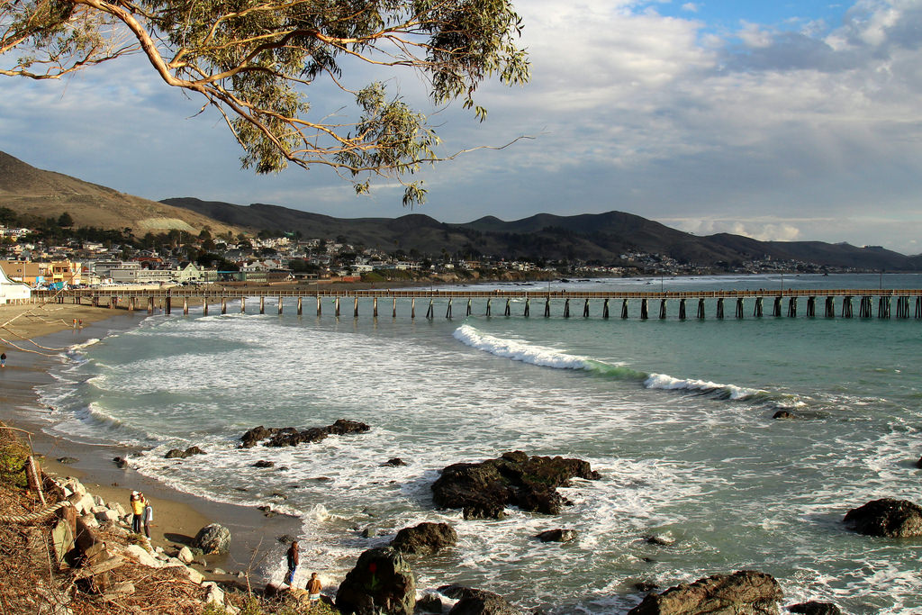 Weather California in January 2021: Temperature & Climate
